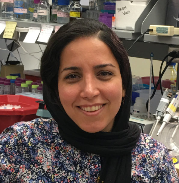 Maryam Faridounnia PhD